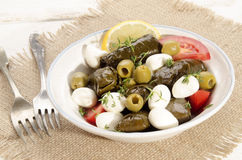 Stuffed grape leaves and mozzarella balls Stock Photography