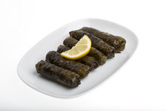 Stuffed grape leaves with olive oil Stock Image