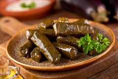 Stuffed Grape Leaves. A plate of delicious stuffed grape leaves with parsley garnish Royalty Free Stock Photography