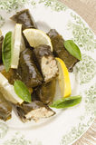 Stuffed grape leaves on a plate Royalty Free Stock Photos