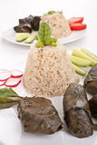 Stuffed grape leaves with rice Royalty Free Stock Images