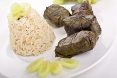 Stuffed grape leaves with rice Stock Image