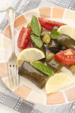 Stuffed grape leaves, tomato and lemon Royalty Free Stock Photo