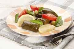 Stuffed grape leaves, tomato and lemon Royalty Free Stock Photos