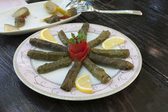 Stuffed grape leaves Royalty Free Stock Photos