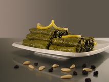Stuffed leaves Stock Images
