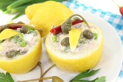 Stuffed Lemons with tuna cream and eggs Stock Image