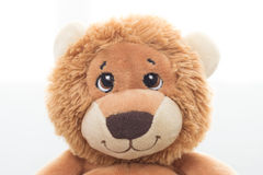 Stuffed lion Royalty Free Stock Photo