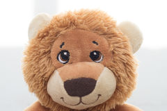 Stuffed lion Royalty Free Stock Image