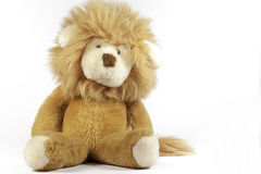 Stuffed lion on white background Royalty Free Stock Images