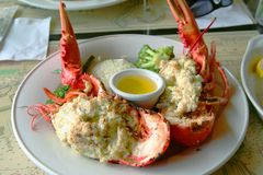 Stuffed lobster royalty free stock image