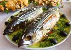 Stuffed mackerel on plate Royalty Free Stock Images