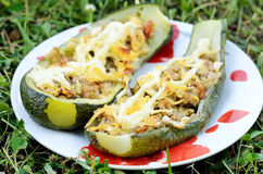 Stuffed marrow Royalty Free Stock Photo