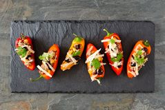 Stuffed mini peppers, above view on a slate background Stock Images