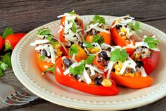 Stuffed mini peppers, close up with wooden background Royalty Free Stock Photos