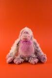 Stuffed Monkey Royalty Free Stock Photo