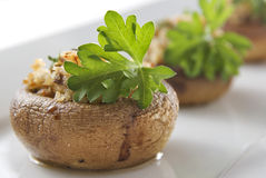 Stuffed Mushrooms Royalty Free Stock Photo