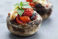 Free Stuffed Mushrooms Stock Photography - 35683382