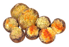 Stuffed Mushrooms. Bread crumb and cheese stuffed mushrooms isolated on a white background Royalty Free Stock Photos