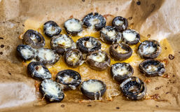 Stuffed mushrooms with cheese. On a baking paper Stock Photos