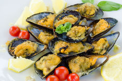 Stuffed Mussels Stock Images