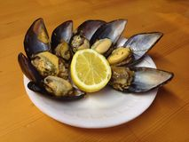 Stuffed Mussels with Lemon Stock Photos