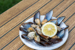 Stuffed mussels with lemon Royalty Free Stock Images