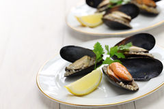 Stuffed mussels, turkish food Stock Image