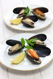 Stuffed mussels, turkish food Stock Photos