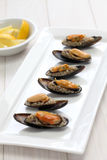 Stuffed mussels, turkish food Royalty Free Stock Image