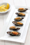 Stuffed mussels, turkish food Royalty Free Stock Photography