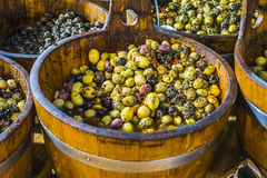 Stuffed olives. Green and black olives stuffed kept in wooden casks Stock Photo