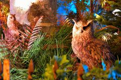 Stuffed owls. Decoration and part of trees Royalty Free Stock Photography