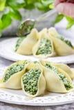 Stuffed pasta shells Stock Photography