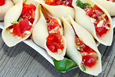 Stuffed pasta shells Royalty Free Stock Images