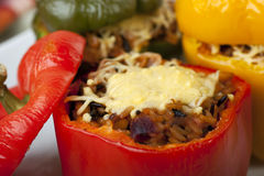 Stuffed Pepper Close Up Stock Photography