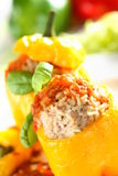 Stuffed pepper with rice Royalty Free Stock Photography
