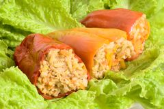 Stuffed peppers. With a lettuce leaf Royalty Free Stock Photos