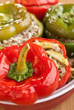 Stuffed Peppers in a Dish Royalty Free Stock Photography