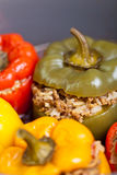 Stuffed peppers. Macro Royalty Free Stock Photography