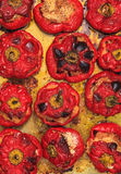 Stuffed peppers. With meat and vegetables Royalty Free Stock Images
