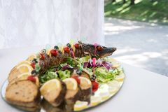 Stuffed pike. A dish of stuffed pike lies on a tray royalty free stock images