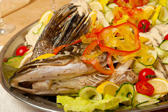 Stuffed pike with head Royalty Free Stock Image