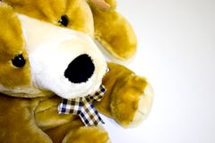 Stuffed puppy Stock Images