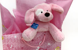 Stuffed puppy and baby gift Stock Photos
