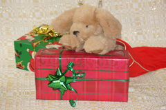 Stuffed puppy and his Christmas present. Royalty Free Stock Image