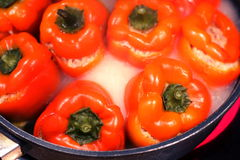 Stuffed red pepper Stock Image