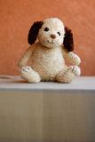 Stuffed retro toy dog Royalty Free Stock Images