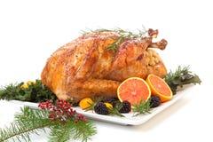 Stuffed Roasted Turkey on white Royalty Free Stock Photos