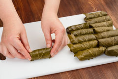 Stuffed rolls with grape leaves Stock Photography